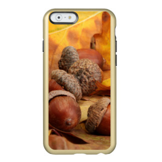 Brown Acorns On Autumn Leaves, Close Up Incipio Feather® Shine iPhone 6 Case