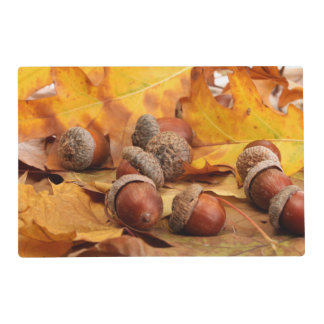 Brown Acorns On Autumn Leaves, Close Up Laminated Placemat
