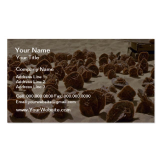 Brown Algeria, desert roses flowers Double-Sided Standard Business Cards (Pack Of 100)