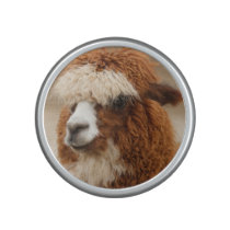 Brown Alpaca bluetooth speaker