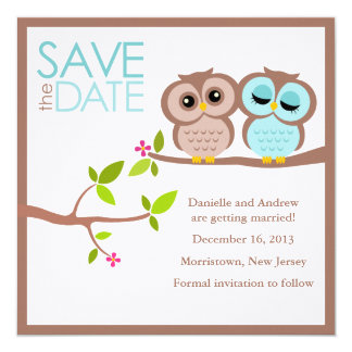 Brown and Aqua Owls Wedding Save the Date Card