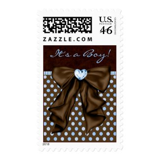 Brown and Baby Blue Baby Shower Postage Stamps