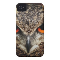 Brown and Black Owl Staring iPhone 4 Case-Mate Case