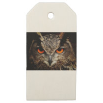 Brown and Black Owl Staring Wooden Gift Tags