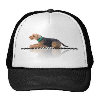 Brown and Black Welsh Terrier Cap Trucker Hat