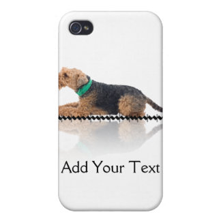 Brown and Black Welsh Terrier  Case For iPhone 4