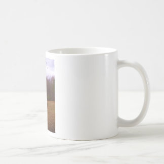 Brown and Blond Horse in a field Coffee Mug