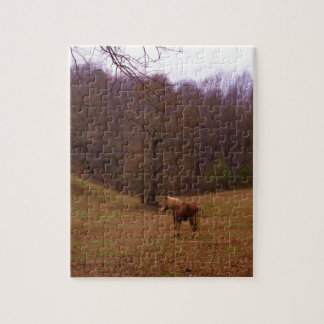 Brown and Blond Horse in a field Jigsaw Puzzle