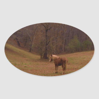 Brown and Blond Horse in a field Oval Sticker