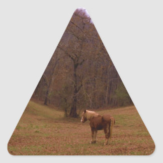 Brown and Blond Horse in a field Triangle Sticker