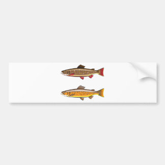 Brown and brook trout bumper sticker