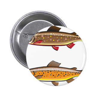 Brown and brook trout pinback button