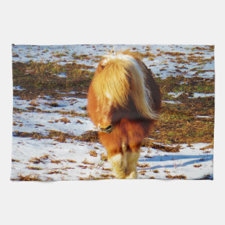 Brown and cream miniature horse in the snow. kitchen towels