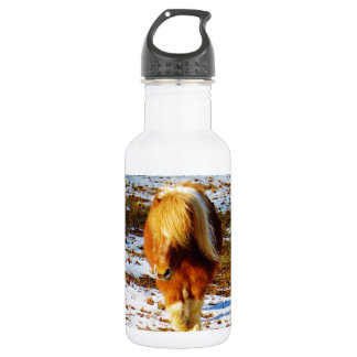 Brown and cream miniature horse in the snow. stainless steel water bottle