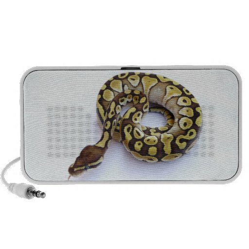 Brown and Gold Ball Python 2 Portable Speakers