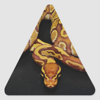 Brown and Gold Ball Python Triangle Sticker