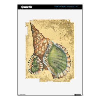 Brown and Green Seashell Skins For iPad 3