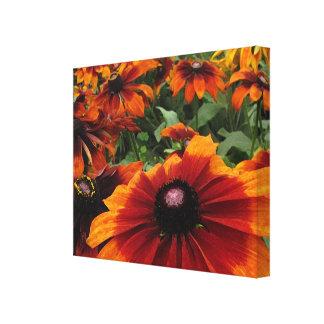 Brown and Orange Rudbeckia Flowers Canvas Print
