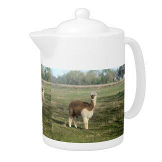 Brown And White Alpaca Teapot