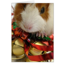 Brown and White Baby Guinea Pig With Bells Card