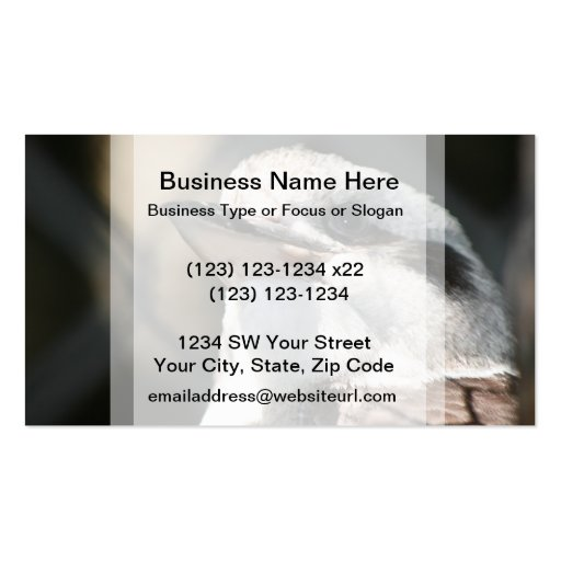 brown and white bird head view business card