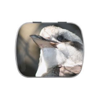 brown and white bird head view candy tins