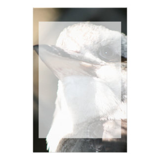 brown and white bird head view stationery
