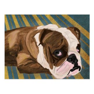 Brown and White Bulldog Lying, Blue & Yellow Back Postcard