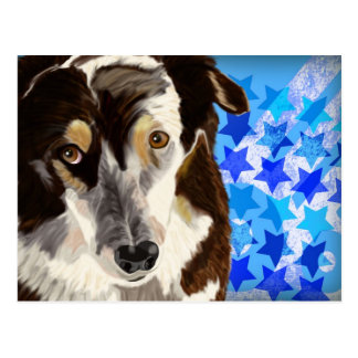 Brown and white coat dog on blue stars background postcard
