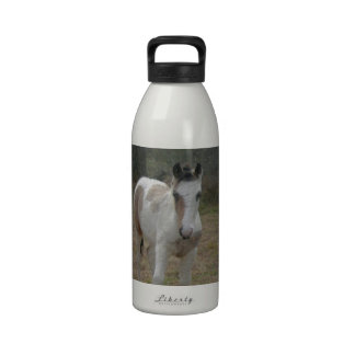 Brown and White Colt Water Bottles