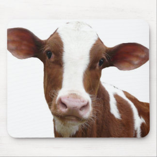 Brown and White Dairy Cow Mouse Pad