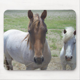 Brown And White Faced Horse, Mouse Pad