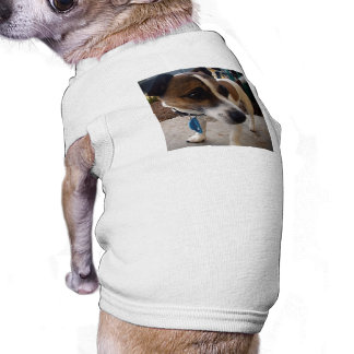 Brown_And_White_Fox_Terrier,_White_Ribbed_Pet_Coat Shirt