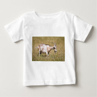 Brown and white goat in grass baby T-Shirt