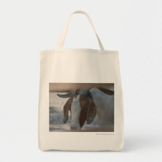 brown and white goat tote bags