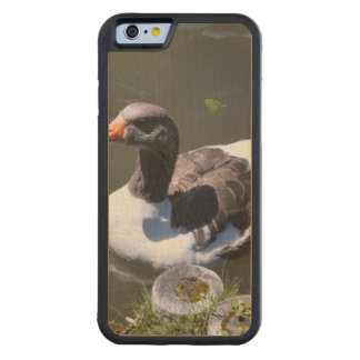 Brown and White Goose Carved Maple iPhone 6 Bumper Case