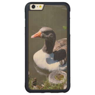 Brown and White Goose Carved Maple iPhone 6 Plus Bumper Case