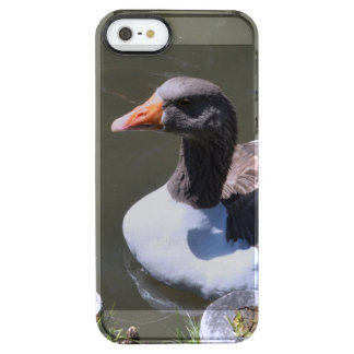 Brown and White Goose Clear iPhone SE/5/5s Case