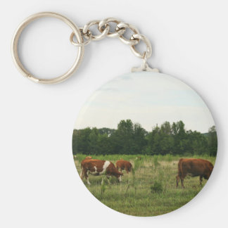 Brown and White Hereford Cattle Basic Round Button Keychain