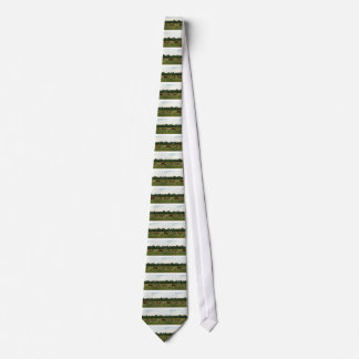 Brown and White Hereford Cattle Neck Tie