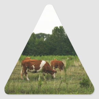 Brown and White Hereford Cattle Triangle Sticker