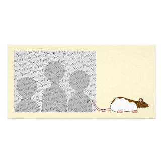 Brown and White Hooded Pet Rat. Picture Card