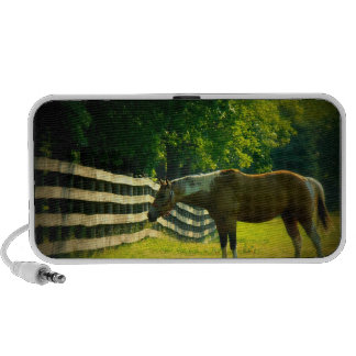 Brown and white horse grazing doodle portable speaker
