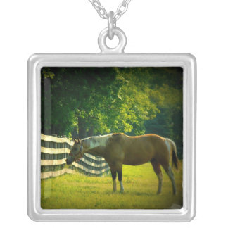 brown and white horse grazing necklace