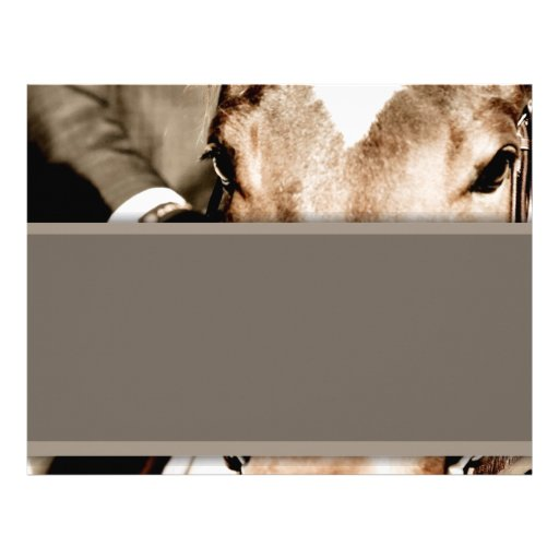 Brown and White Horse Letterhead