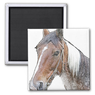 Brown and White Horse Magnet
