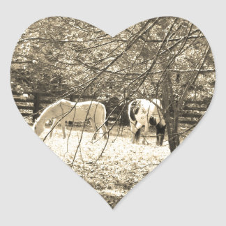 Brown  and white Horsess in tree. Sepia Tone Heart Sticker