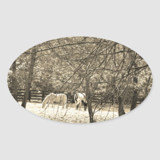 Brown  and white Horsess in tree. Sepia Tone Oval Sticker