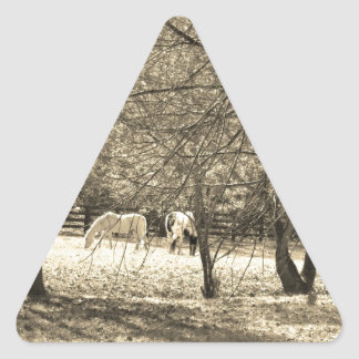 Brown  and white Horsess in tree. Sepia Tone Triangle Sticker