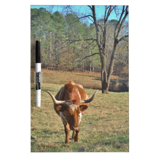 Brown and White Longhorn Bull Blue Sky Dry-Erase Boards